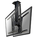"Newstar PLASMA-C100D, 37""-75"", Black"
